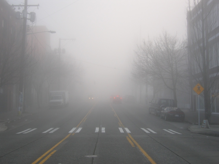 dense_seattle_fog